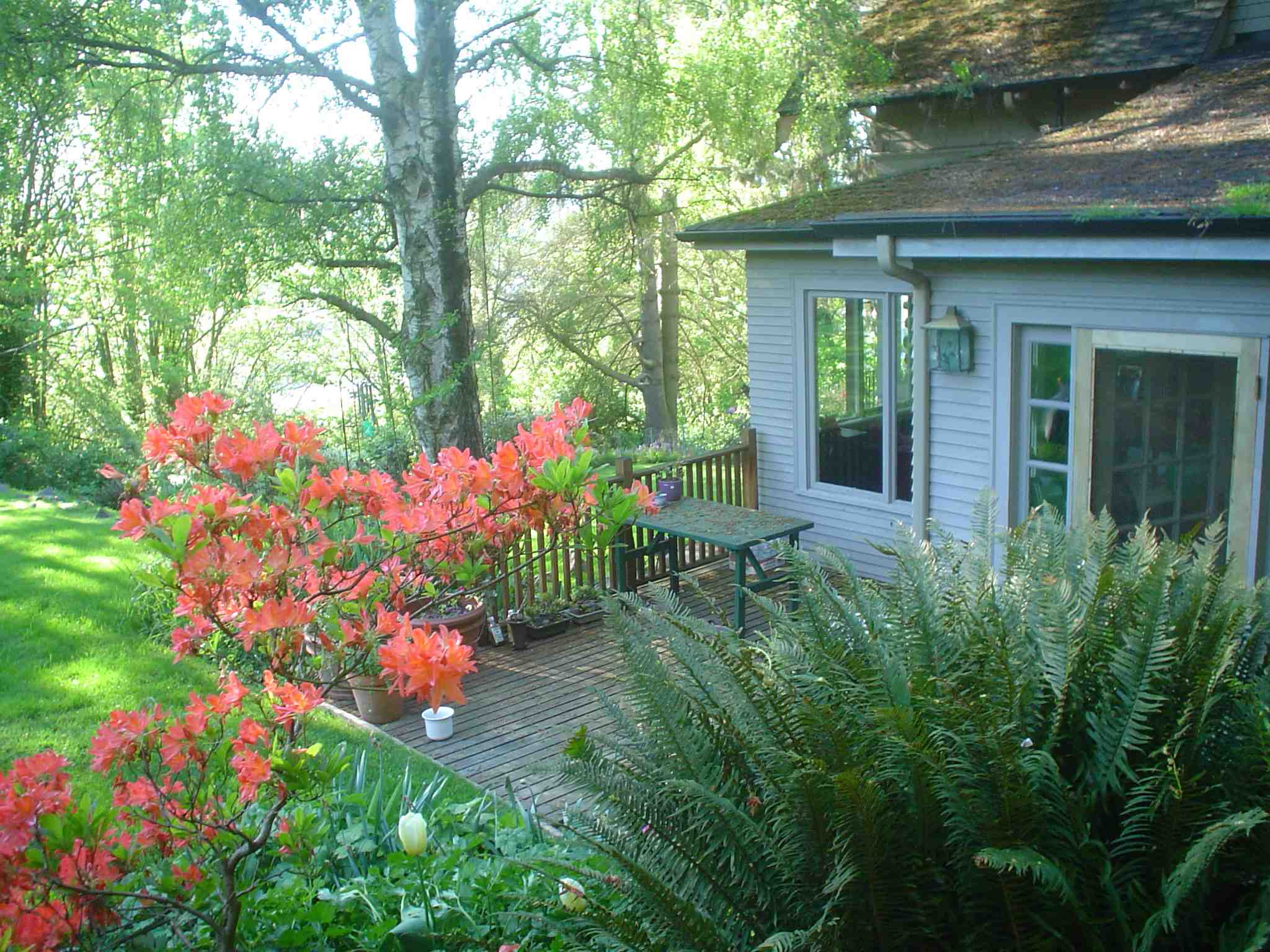 House Backyard Garden : Sell Your Home Seattle  Seattle Home Site